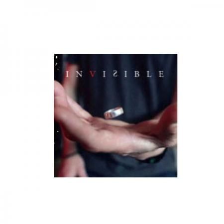 Invisible by Damien Savina